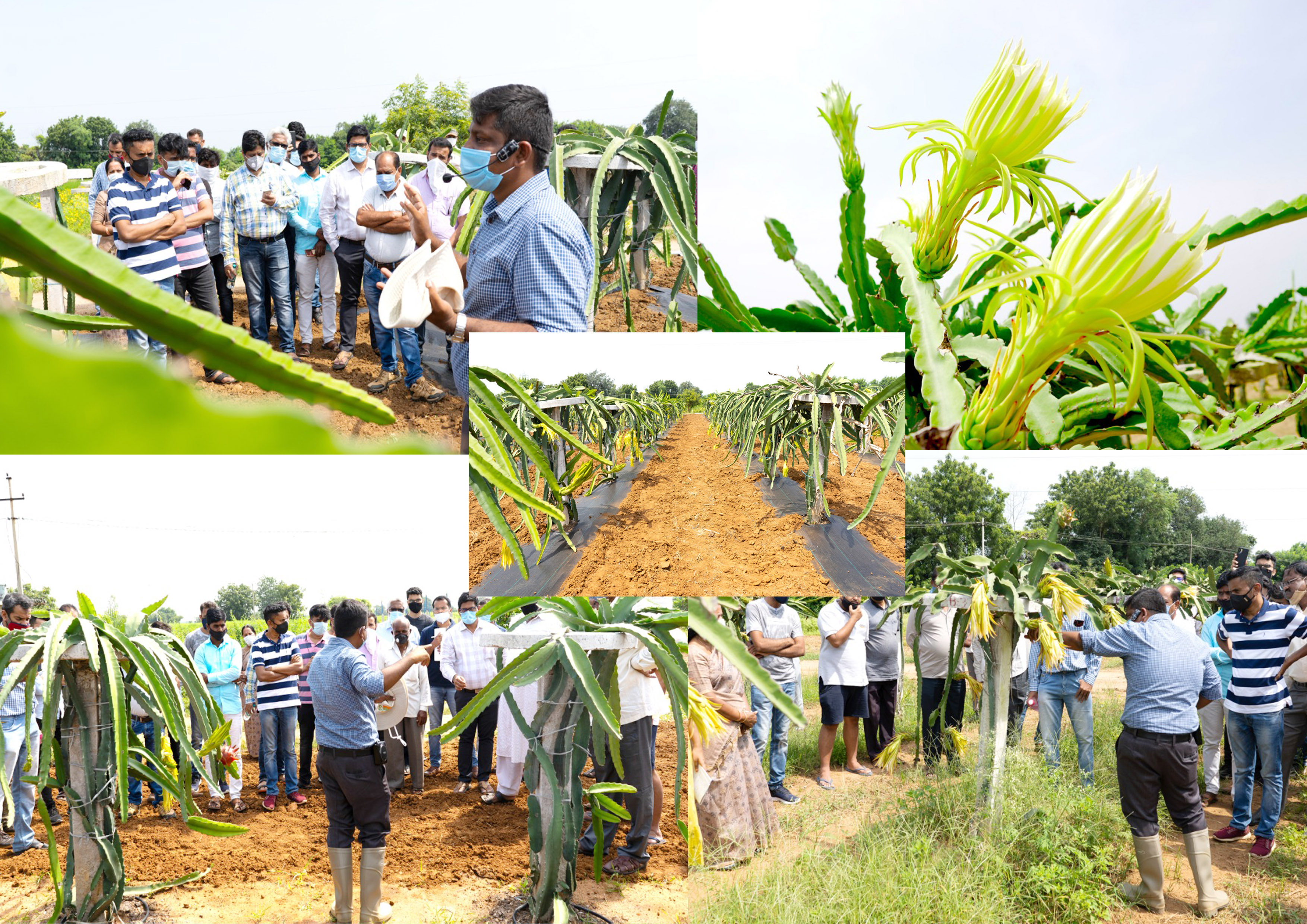 Farm visit to Deccanexotics by farmers and enthusiasts across 9 different states