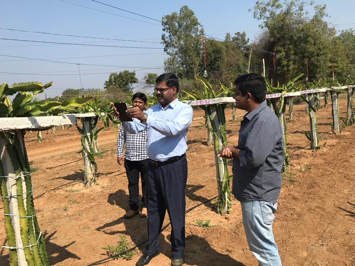 Visit to our farm by  Mr Chakrapani