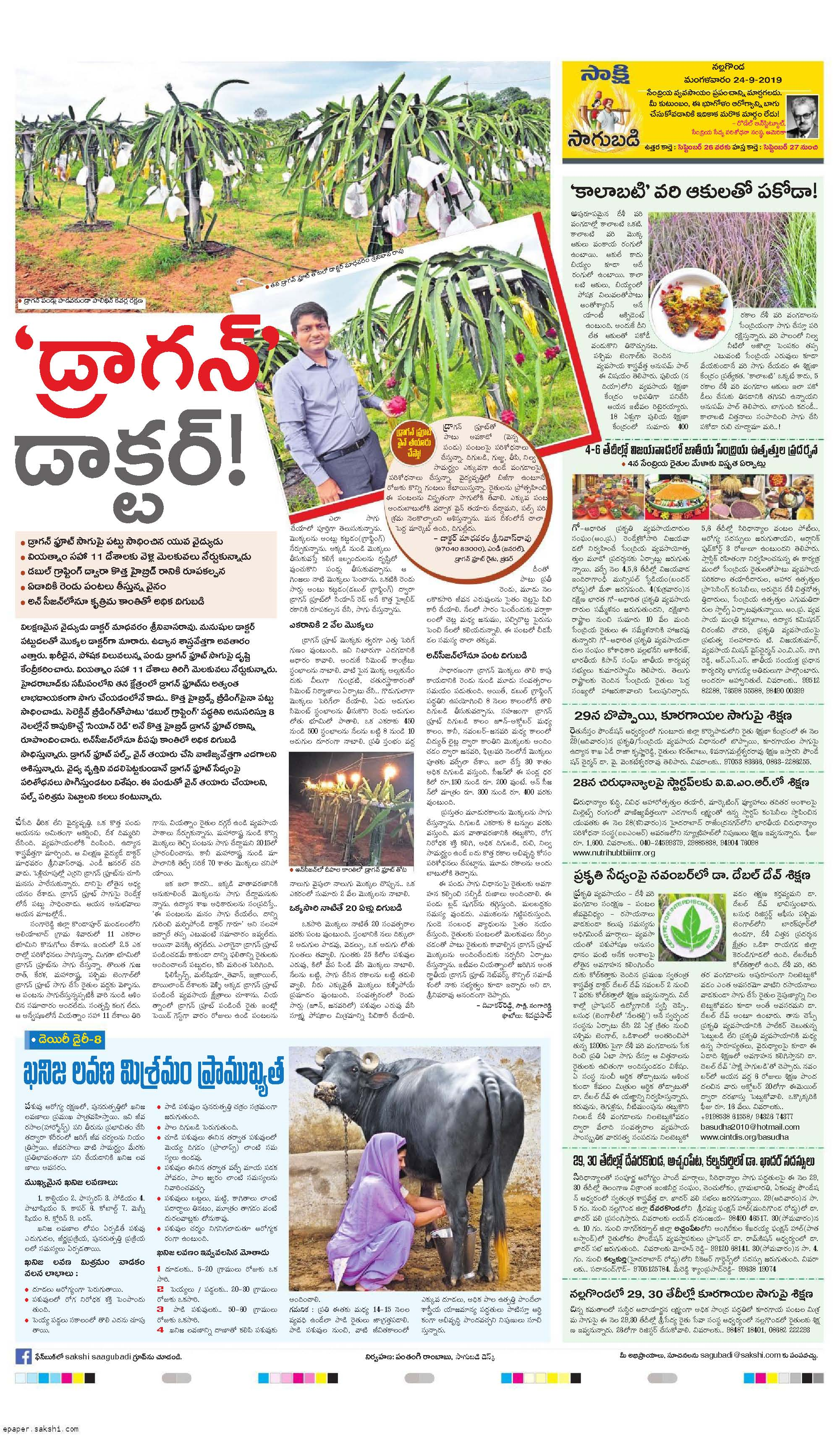 'Dragon Doctor' Our largest dragon-fruit farm story printed one of most popular Sakshi newspaper